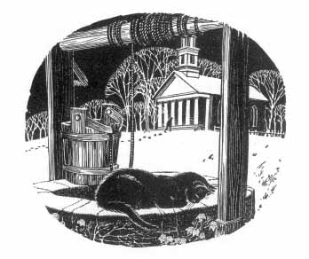 The blue cat lays on the edge of a well with a church in the background.